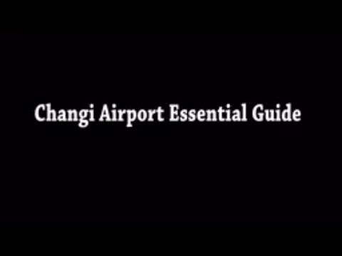 Changi Airport Singapore | Connecting flight |WiFi Access |
