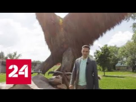 На крыле орла. Специальный репортаж Антона Борисова - Россия 24