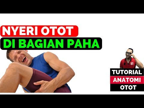 Video Series Tutorial Anatomi Otot -------------------------------------------------------- Penyebab.