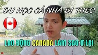 🇨🇦Định cư Canada #1: Du học Canada cả nhà đi theo 📚Xuất khẩu lao động Canada   Quang Lê TV #107