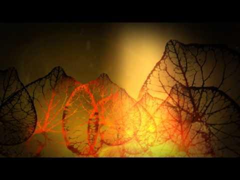 Cosmic Trance -- Lauge & Baba Gnohm - Beyond the Peak