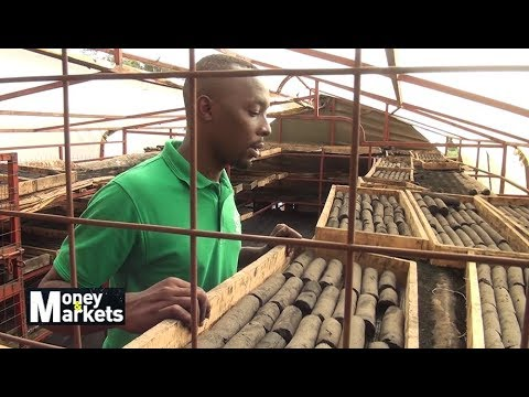 Young Entrepreneur Making A Difference By Turning Organic Waste To Charcoal