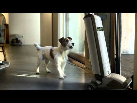 LG CordZero™ lonely vacuum cordless(60s)