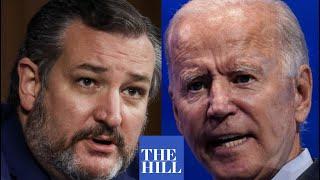 Ted Cruz BLASTS Joe Biden During Senate Hearing