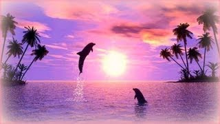 ❀ Soothing Relaxation with Dolphins