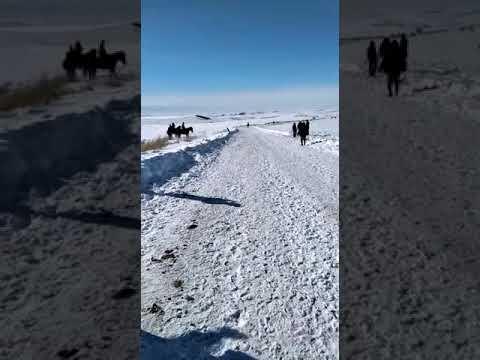 19-январь 2020ж Сұлутөр ауылы Сынақ Құнан