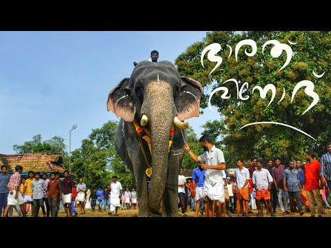 ഭാരത് വിനോദ് അവന്റെ ലോറിയിൽ | Bharath vinod Kerala elephants | Aanapperuma | ആന E4 elephant