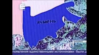 Красноярский край сможет прожить без импортных товаров(, 2015-01-26T03:08:36.000Z)