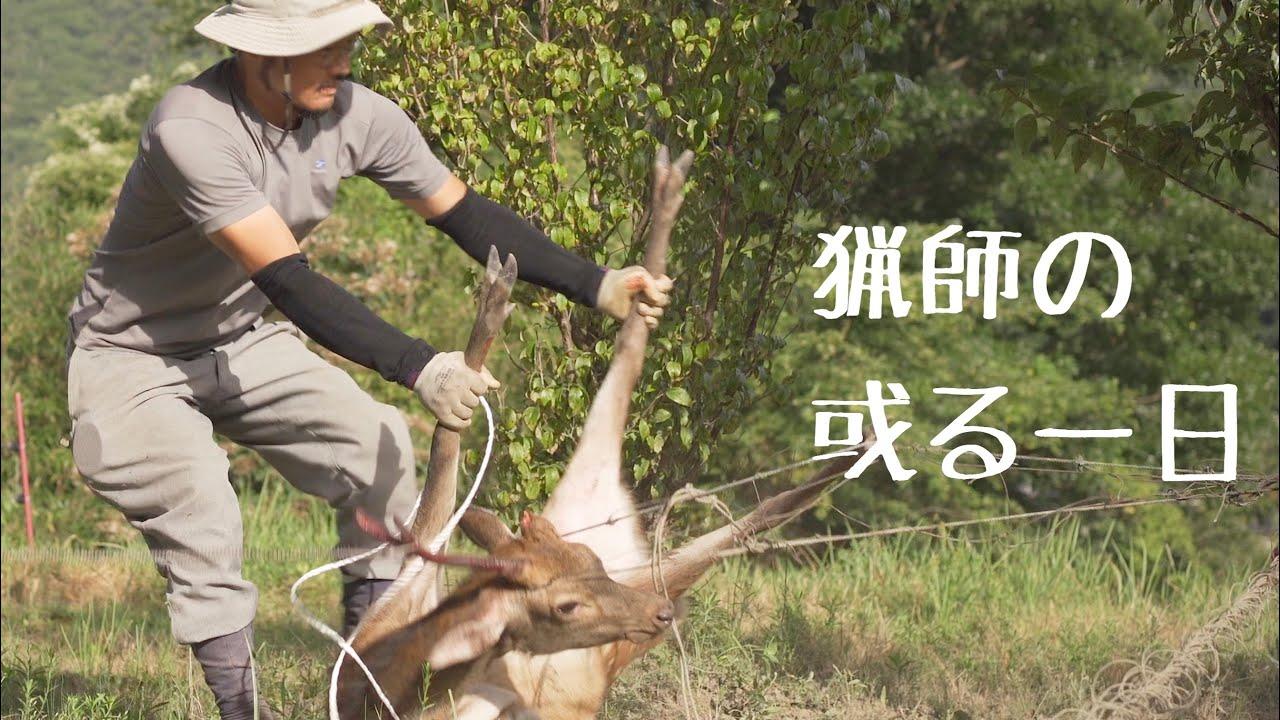 【生け獲り 特別編】里での出来事/ 田舎暮らし/狩猟/Catch a Deer Alive/Hunting deer