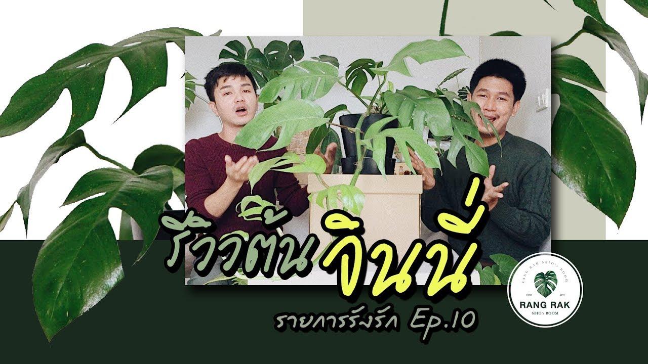 รายการรังรัก EP.10 | #รีวิวต้นจินนี่ - YouTube