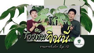 รายการรังรัก EP.10 | #รีวิวต้นจินนี่