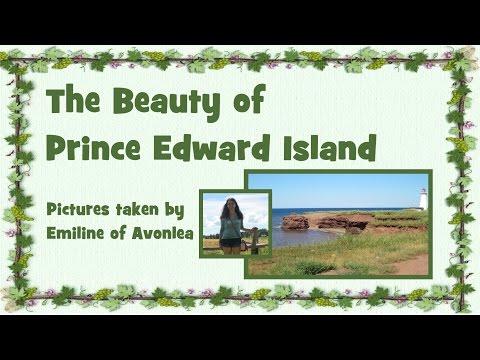 The Beauty of Prince Edward Island