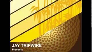 Jay Tripwire - Next Level [Seasons US, 2009]