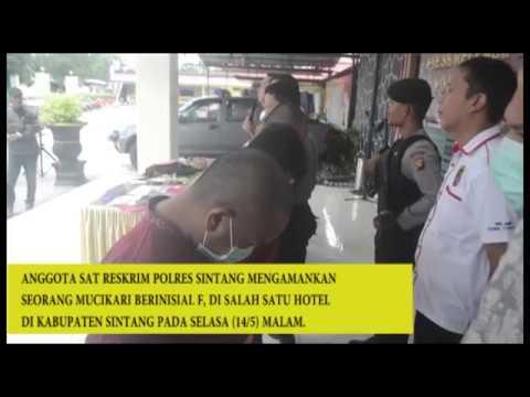 Prostitusi Online Di Sintang, Mucikari Tawarkan PSK Rp 1 – 3 Juta