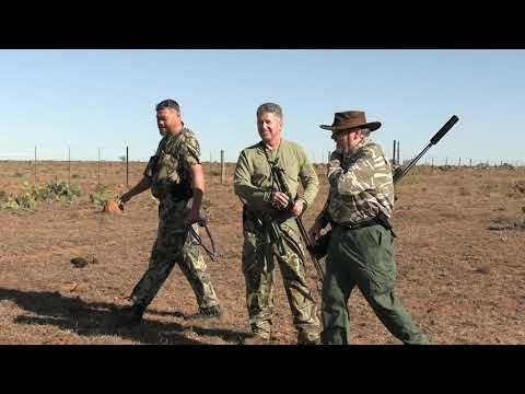 Plains Game Hunt 2019 With Clint Hunting Safaris