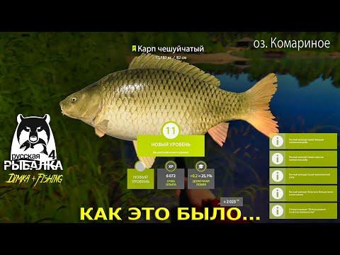 Русская рыбалка 4.Карп 🐟 15,181 кг.Оз. Комариное.Второй пошёл...Как это было...