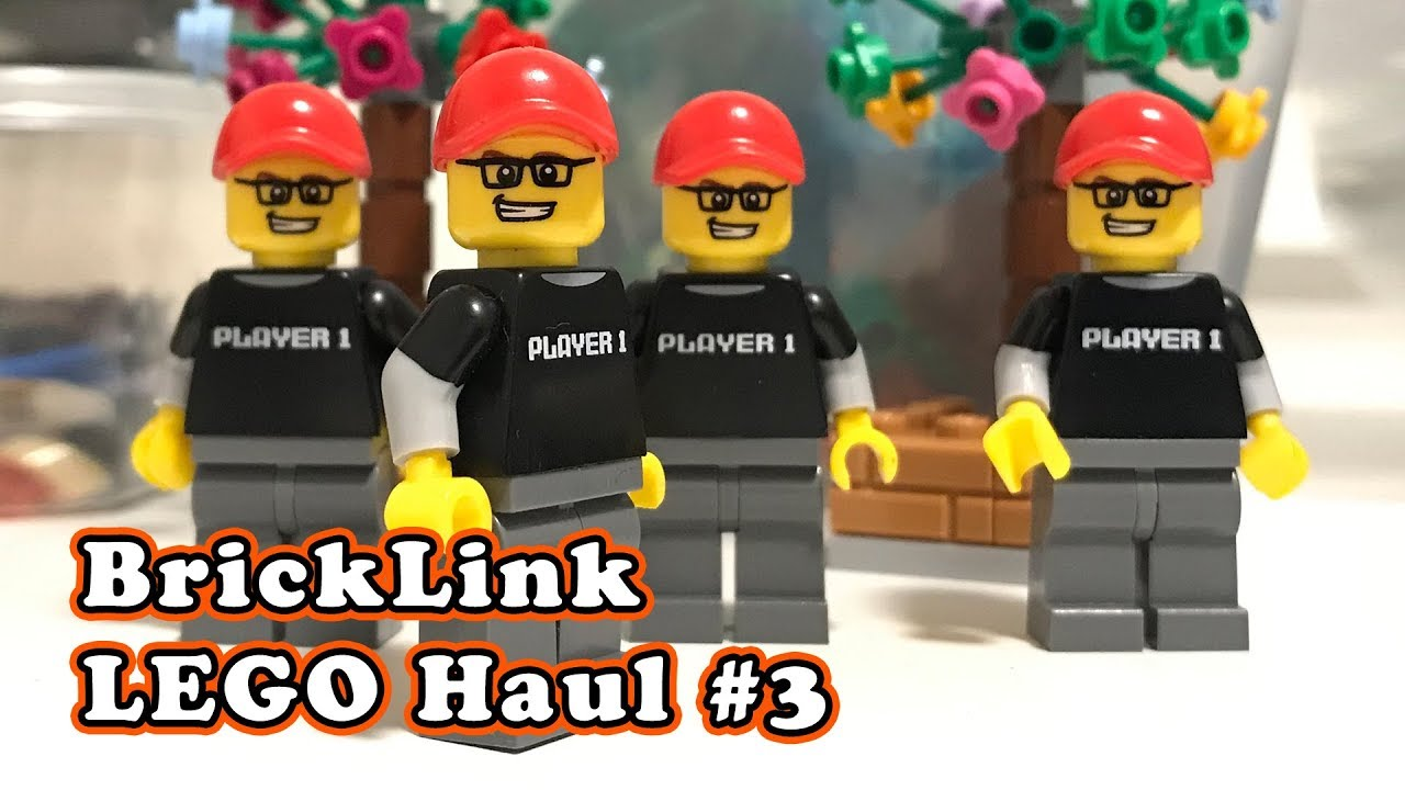LEGO Parts Haul from BrickLink.com - Sig Figs, Hogwarts Express ...