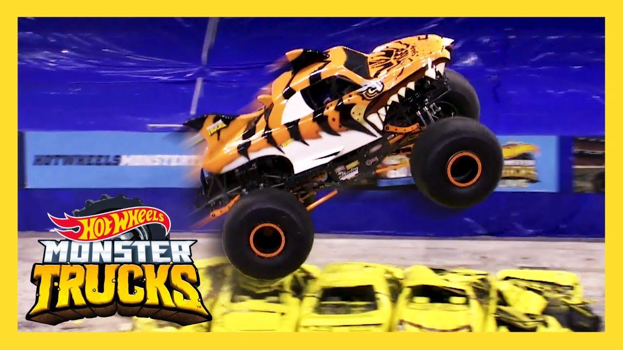 meet the monsters tiger shark monster trucks live hot wheels youtube. Black Bedroom Furniture Sets. Home Design Ideas