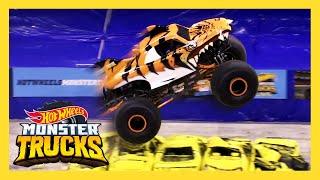 MEET THE MONSTERS: TIGER SHARK | Monster Trucks: LIVE | Hot Wheels