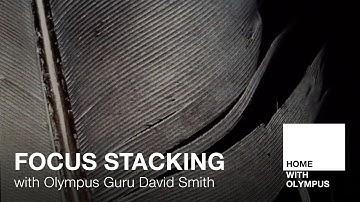 Focus Stacking with Olympus Guru David Smith