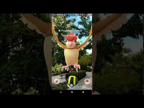 Pokémon GO AR+ Running on Android P on the Pixel 2XL