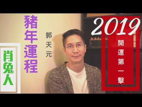 【生肖】生肖2019 |流年 ☯️豬年十二生肖運程簡介🌕 | 參考 & 啟示