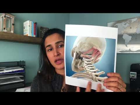 What Can Help Occipital Neuralgia And Headaches