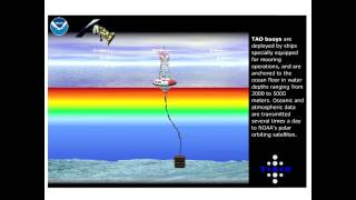 TAO EL Nino Observing System