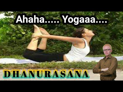 yoga for beginners  dhanurasana  youtube