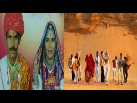 चम्पा मेथी सांग जिनावरियो #champa methi Rajasthani Song