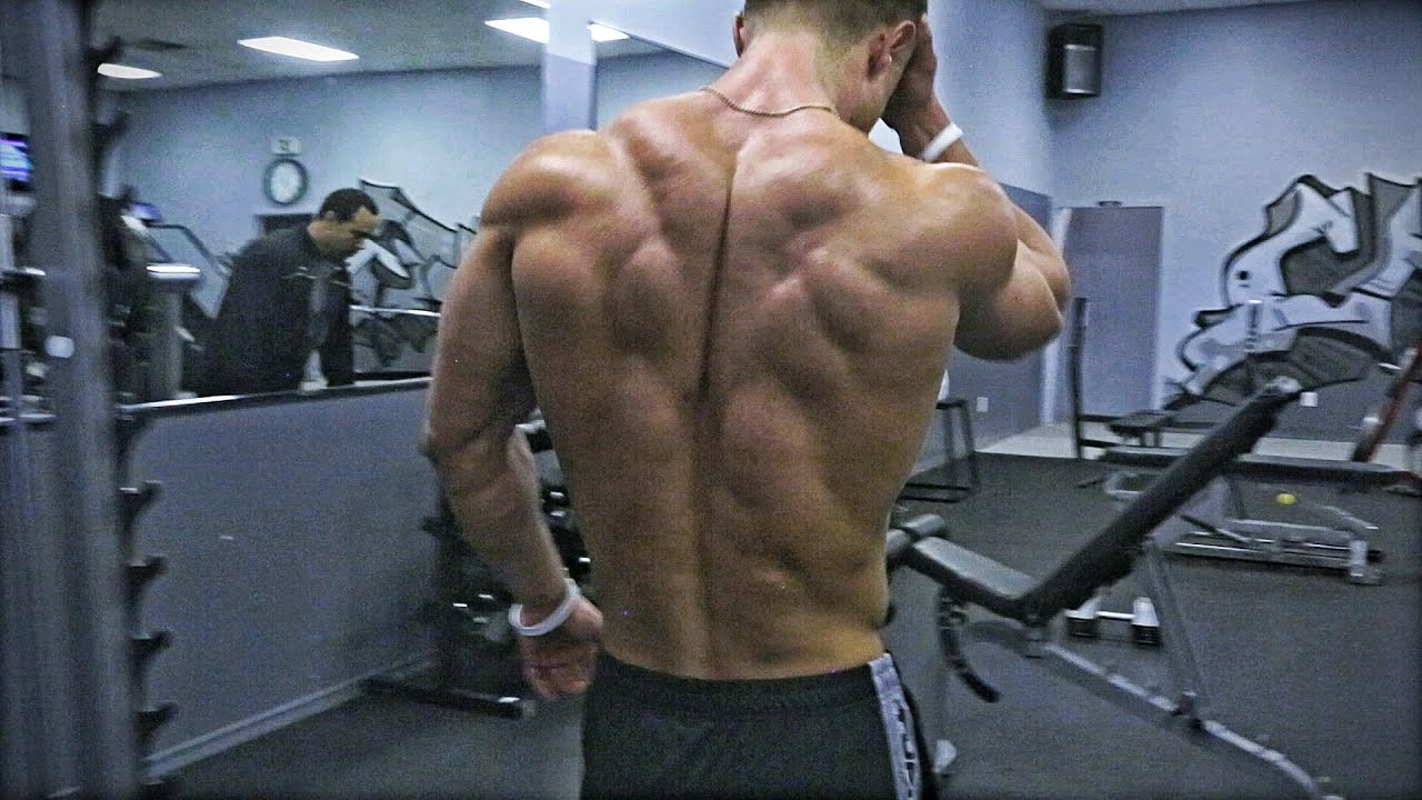 Training Motivation Building Back Muscles Paul Fisher