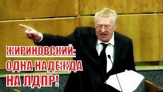 Фееричное выступление Жириновского на отчетном выступлении председателя Правительства Д. Медведева