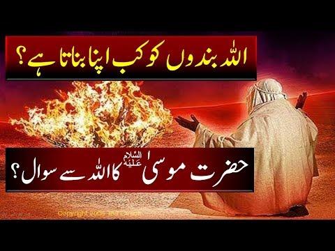 Hazrat Musa AS ka Allah se Sawal || Story of Prophet Mosa A.S || चमत्कार || नबी