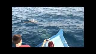 Maldives Hotel Hakuraa Huraa Chaaya Lagoon montage film