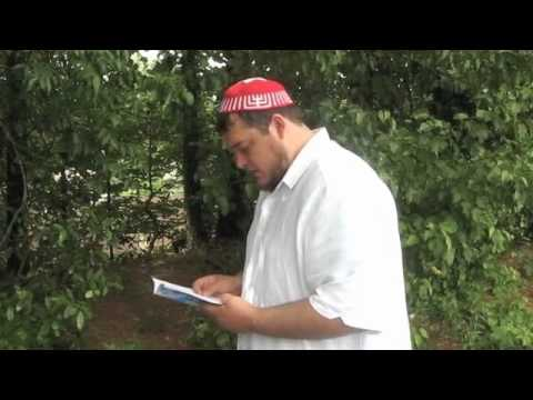 Mincha (The Afternoon Service)
