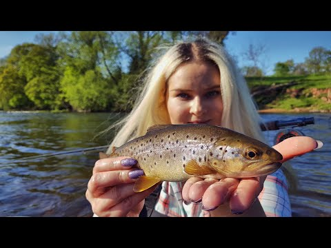A Wild Trout In FIVE CASTS! Fly Fishing River Usk Wales Day One