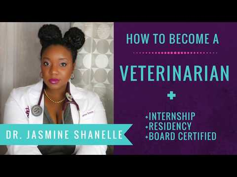 How long does it take to become a Veterinarian and Board Certified?