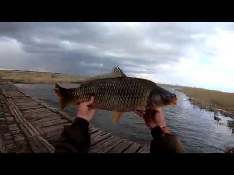 Рыбалка ПАУКОМ 2020...
