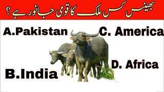 Very interesting and important general knowledge| GK questions with answers in Urdu| the world gk