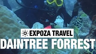 The Daintree Rain Forrest (Australia) Vacation Travel Wild Video Guide