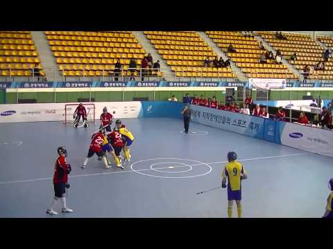 2013 Special Olympics World Winter Games- Floor Hockey- Gold Medal Game- USA v Sweden