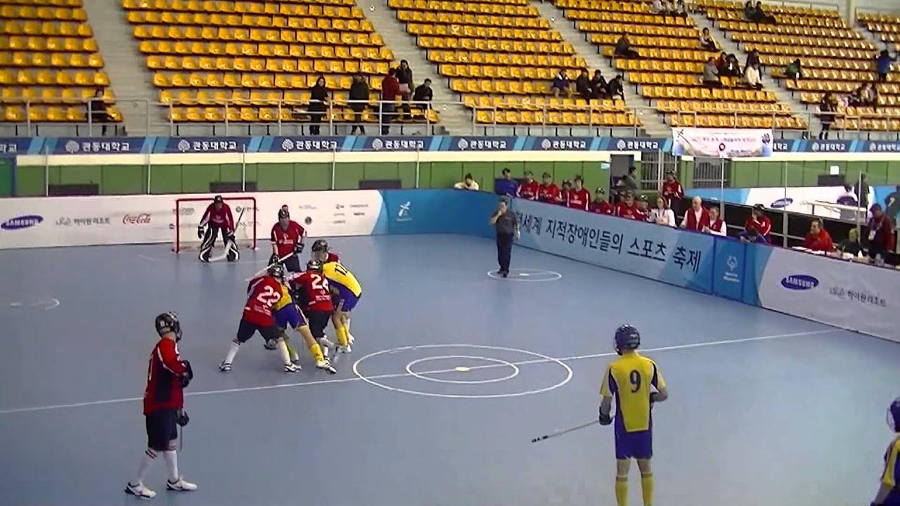 2013 Special Olympics World Winter Games  Floor Hockey  Gold Medal Game   USA V Sweden   YouTube