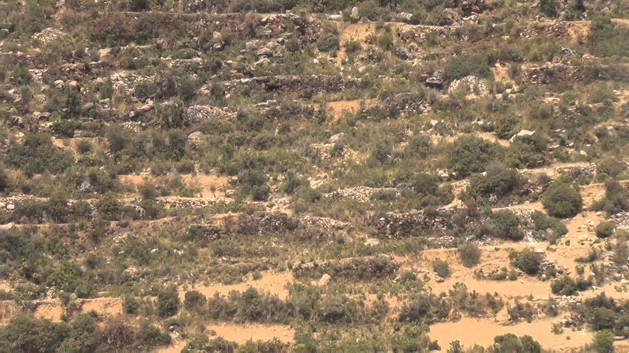 Terrazas Preincas Para Cultivo En La Isla Del Sol Lago Titicaca Bolivia