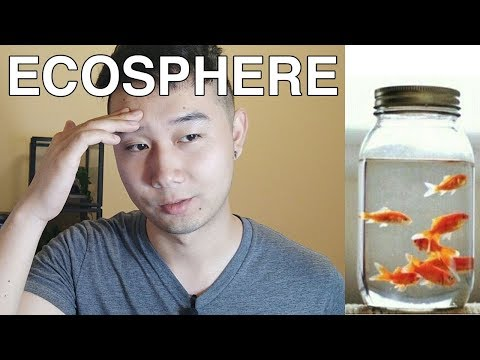 NEW DIY CLOSED ECOSPHERE! | Fish Tank Review Ep. 19