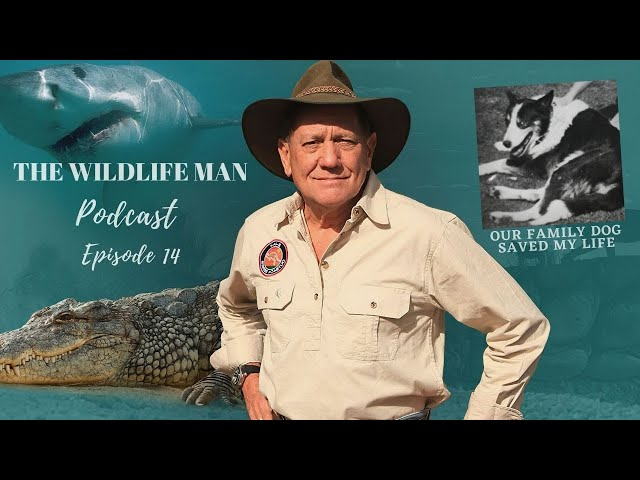 The Wildlife Man Podcast - Episode 14 - Our Family Dog Saved my Life
