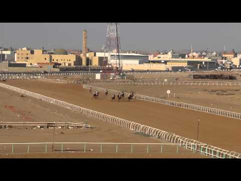 horse riding jeddah