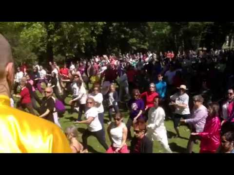 World Tai Chi day in Porto