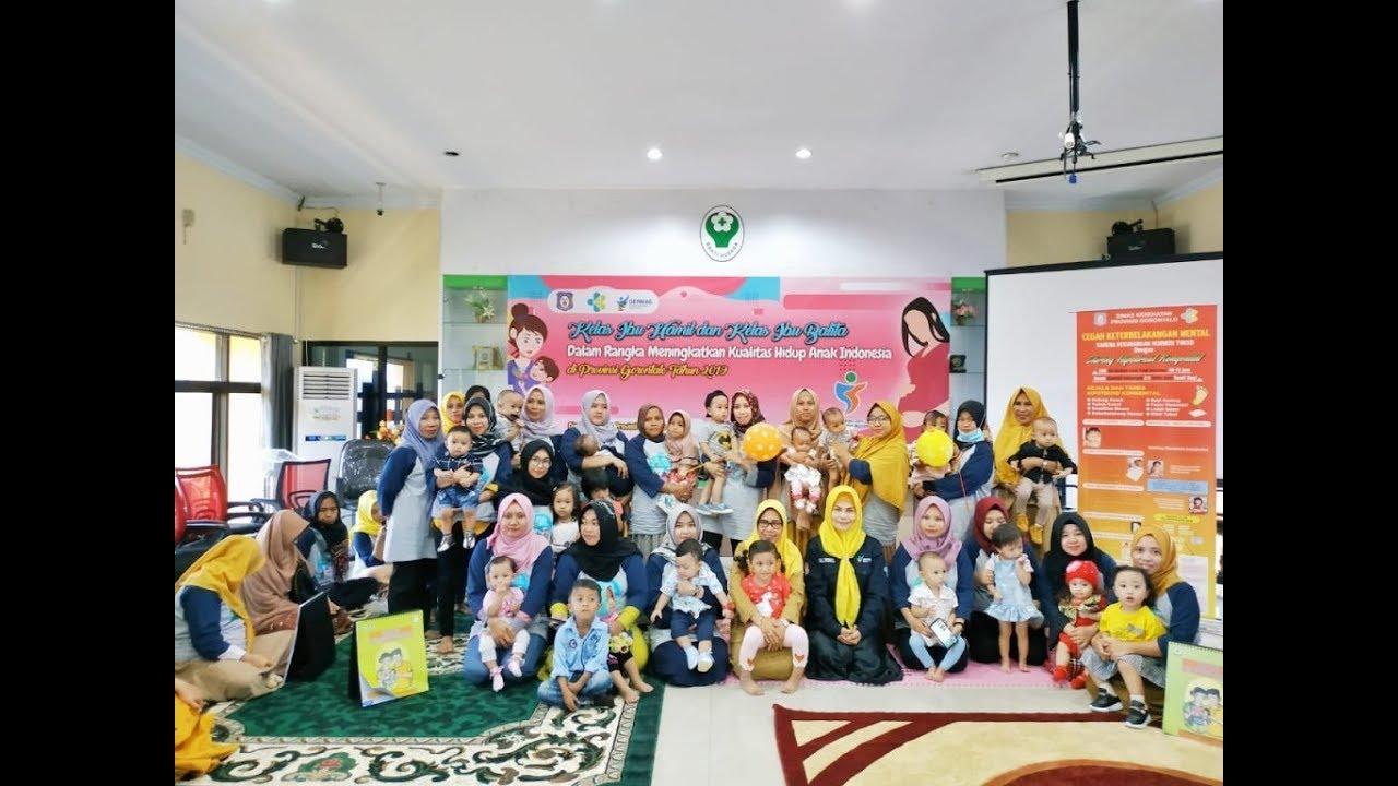 HKN Ke-55, Dinkes Provinsi Gelar Kelas Ibu Hamil dan ...
