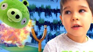 Angry Birds in real life. Энгри Бердс в реальной жизни.