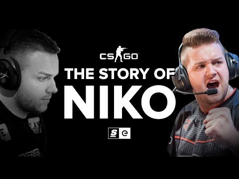 The Story of Niko